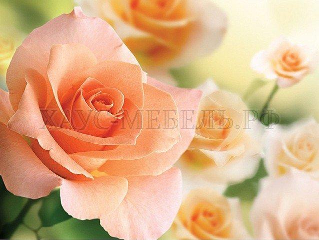 Стол обеденный Чайная роза